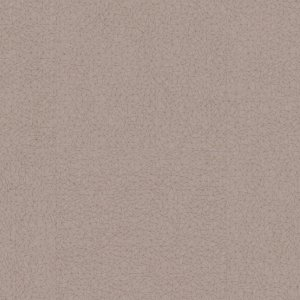 0035 SPIDER TAUPE